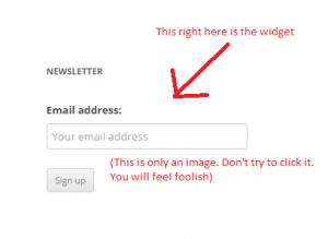 newsletter widget